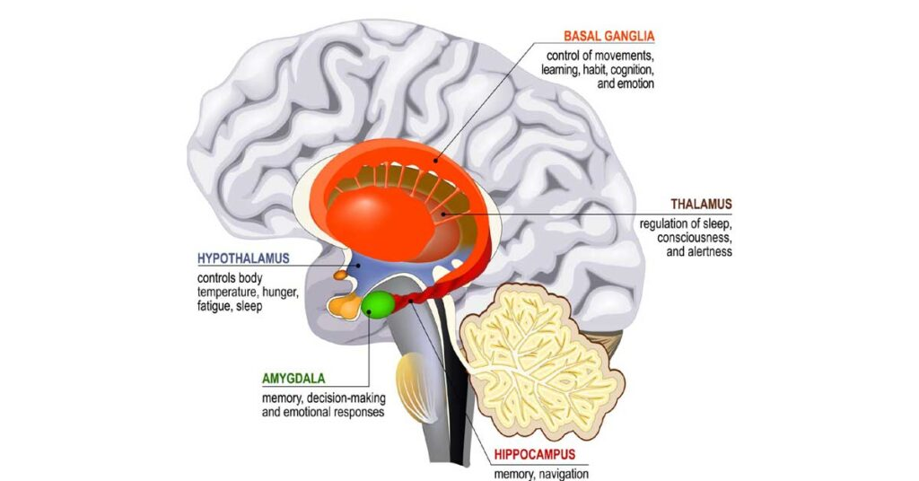 Brain injury changes a person